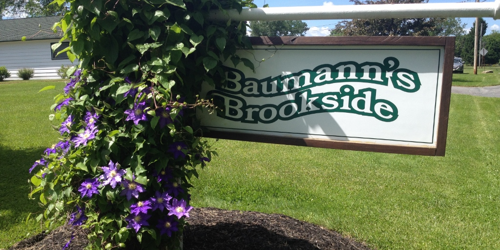 Baumann's Brookside sign